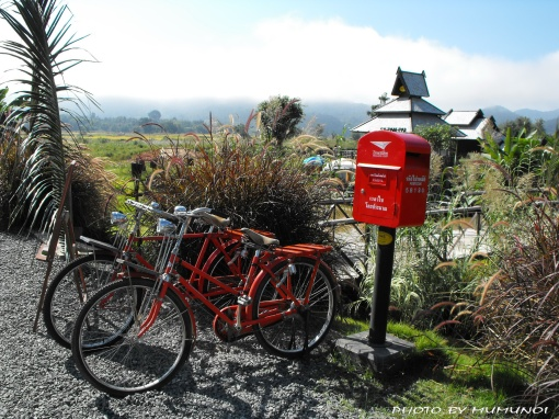 The uniqueness of this coffee house is the 2 red bicycles and a lovely post box